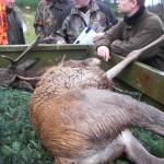 Jagt i skals + borrislejren 2011 012
