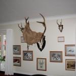 Jagt i skals + borrislejren 2011 039
