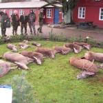 Jagt i skals + borrislejren 2011 047