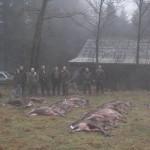 krondyrs jagt i noerlund 22 12 2011 016